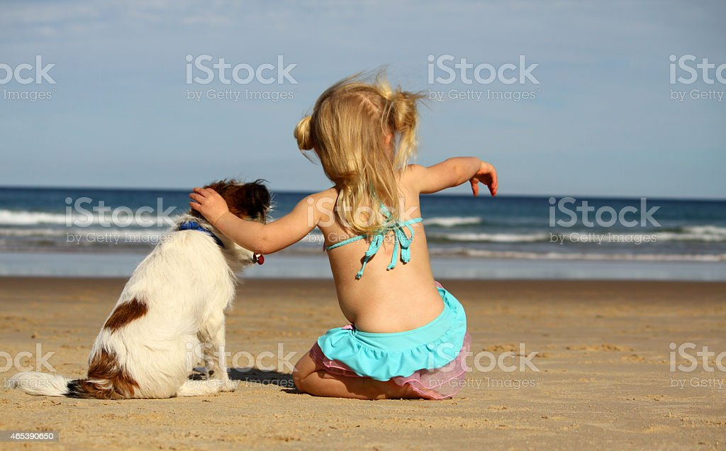 Little girl at the beach with jack russell dog stock photo