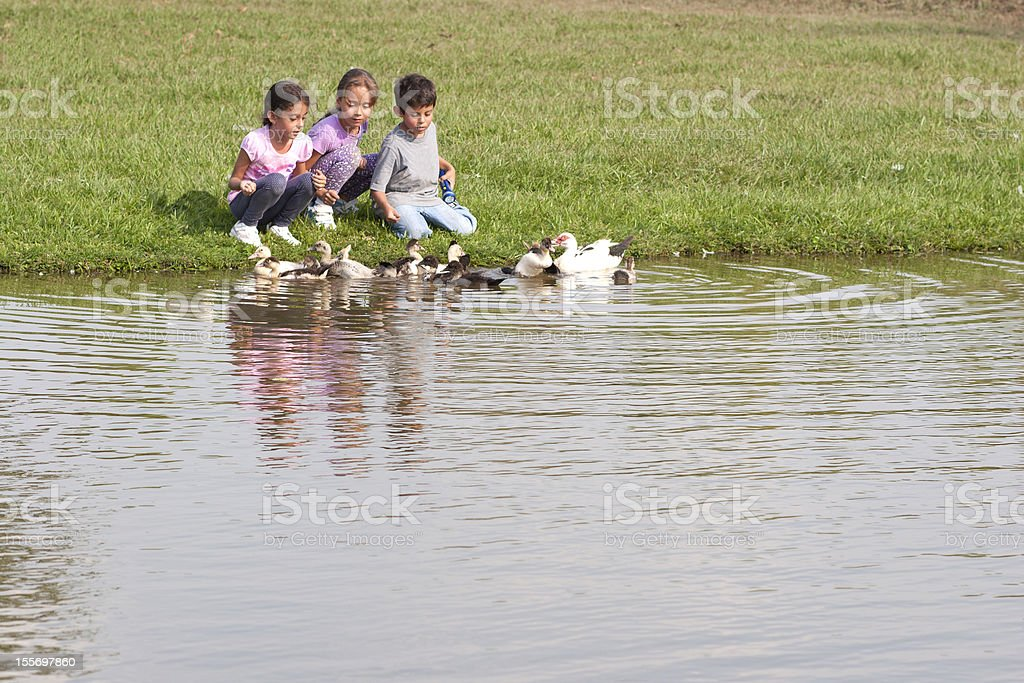 Little Girl at the Duck Pond royalty-free stock photo