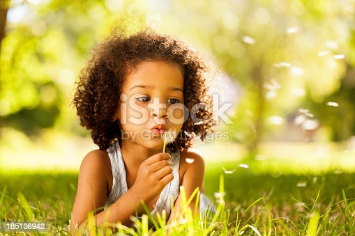Cute little girl busy blowing Dandelion seeds while relaxing in the park. Horizontal Shot.