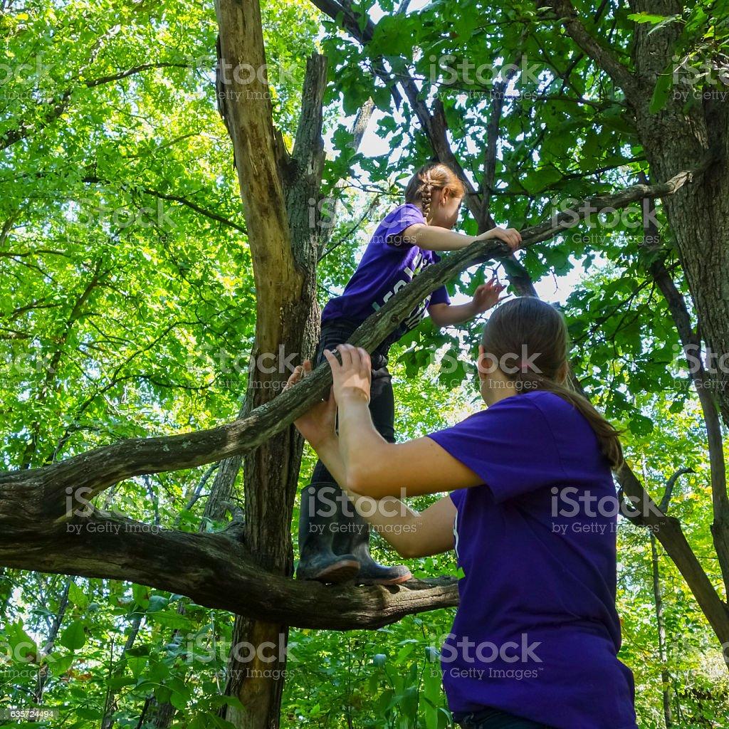 Little Girl Climbing Across the Branch of a Fallen Tree stock photo