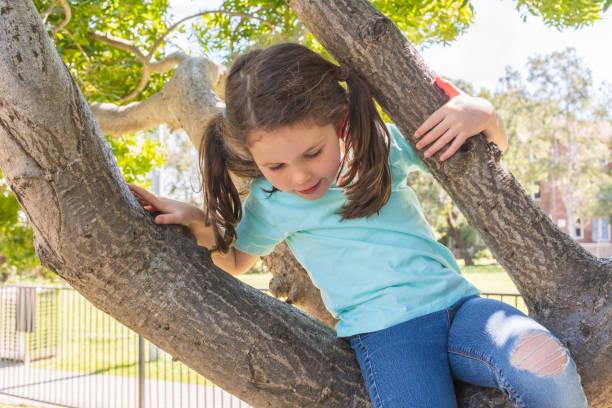 Little girl climbing in tree stock photo