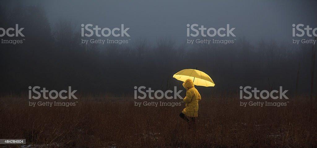 Little girl crossing the field in fog stock photo