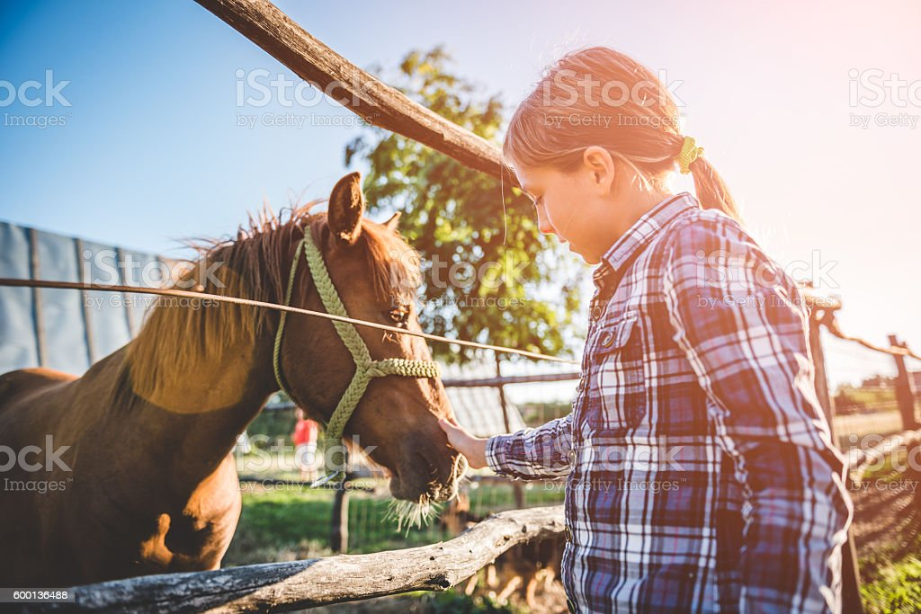 Little girl cuddle horse stock photo