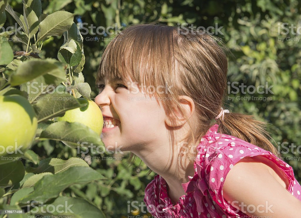 little girl eat an apple royalty-free stock photo