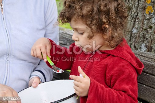 176993221istockphoto Little girl eating red currant with spoon 650743000