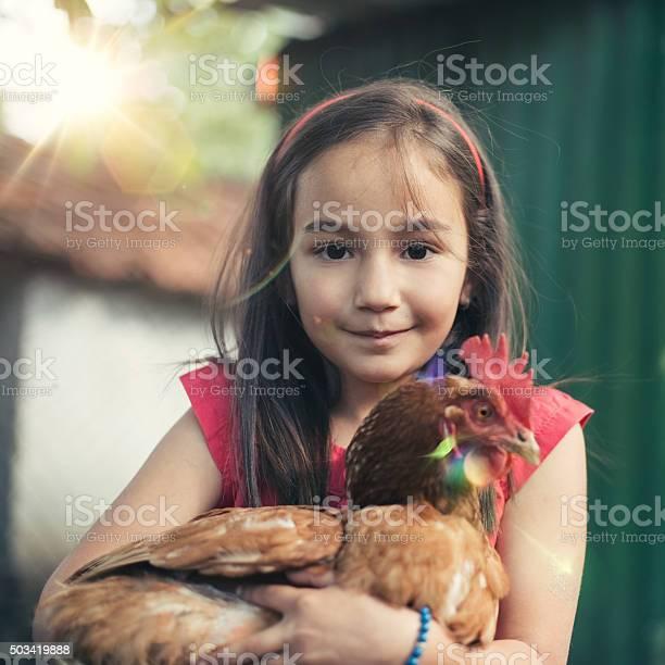 Little girl enjoying a brown hen picture id503419888?b=1&k=6&m=503419888&s=612x612&h=ap b3iniwfnlj  yl j9lgl0h2hhilqkmo6le4p0nnq=