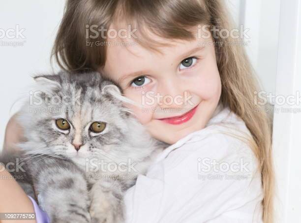 Little girl face cat close up picture id1092775750?b=1&k=6&m=1092775750&s=612x612&h=ciatfseaod3  cqzeq7pskfo1xjqb 7 ccy g1qfbmc=