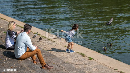 Little girl throwing food at pigeons and ducks on a river bank while her parents watch her.
