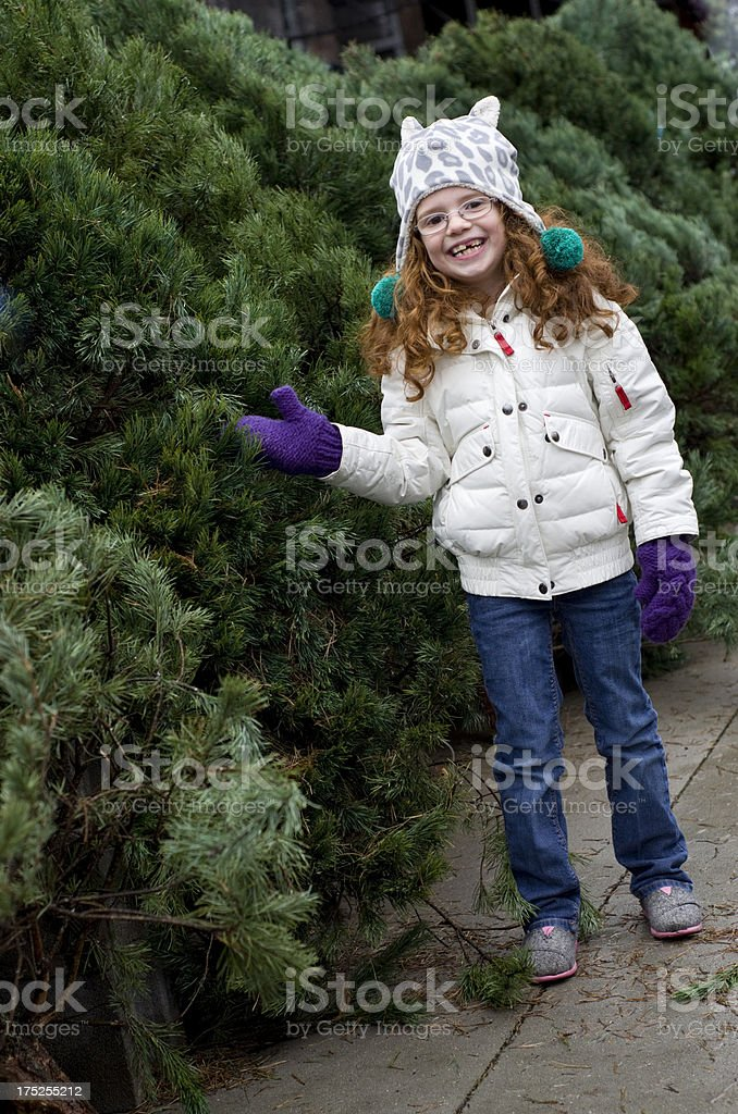 little girl finds the perfect christmas tree royalty-free stock photo