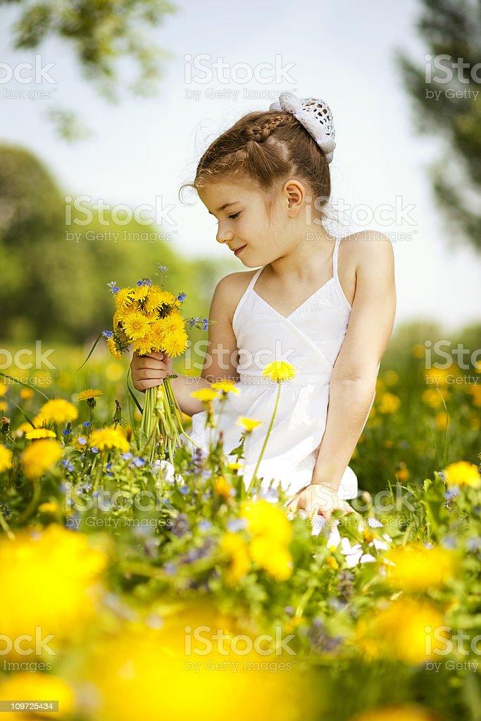 Little girl gathering flowers royalty-free stock photo