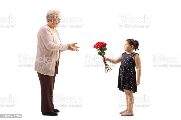 Little girl giving a bunch of red roses to a grandmother picture id1162625756?b=1&k=6&m=1162625756&s=612x612&h=4jsh7zt7kxh8ywmuh7 pchuywpnvpynqatvp7zgma8c=