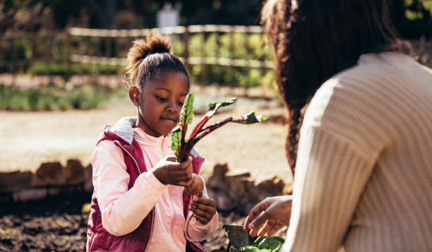 Little girl helping her mother in the garden stock photo