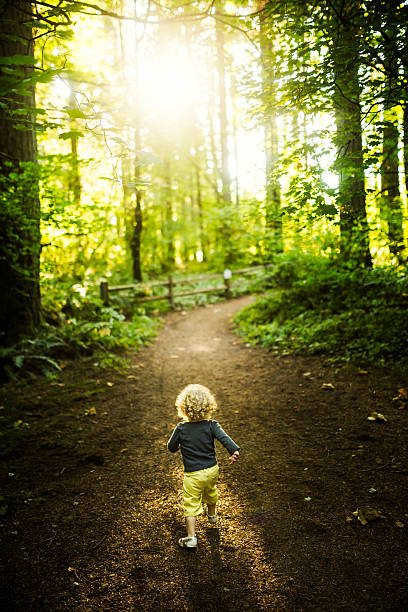 Little Girl Hiking up Forest Trail stock photo