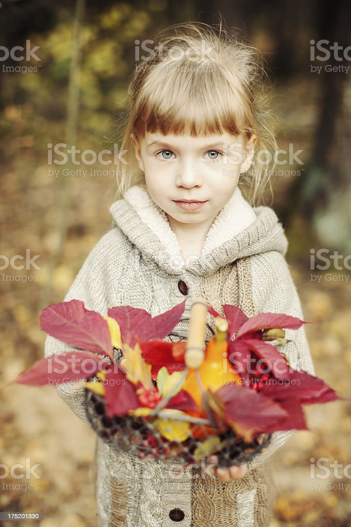 Little girl holding a basket with pumpkin and autumn leaves royalty-free stock photo