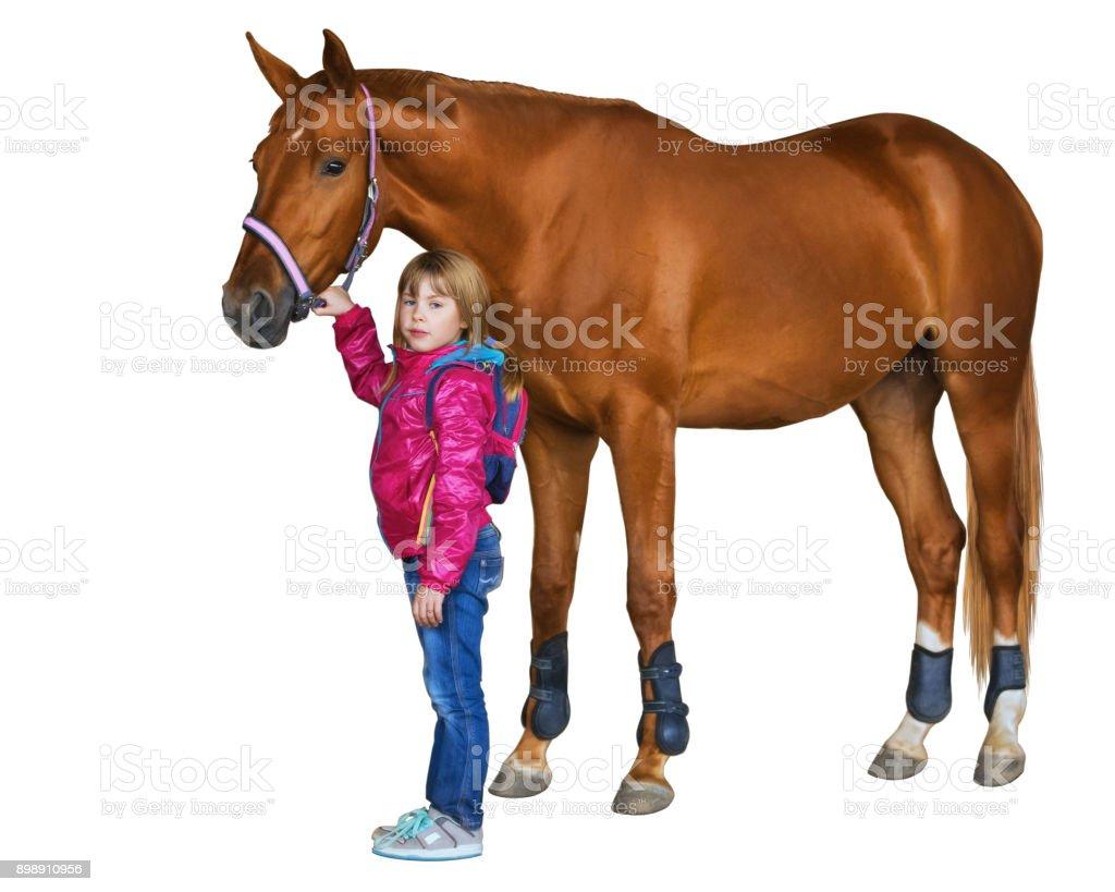Little girl holding a big horse. - foto stock