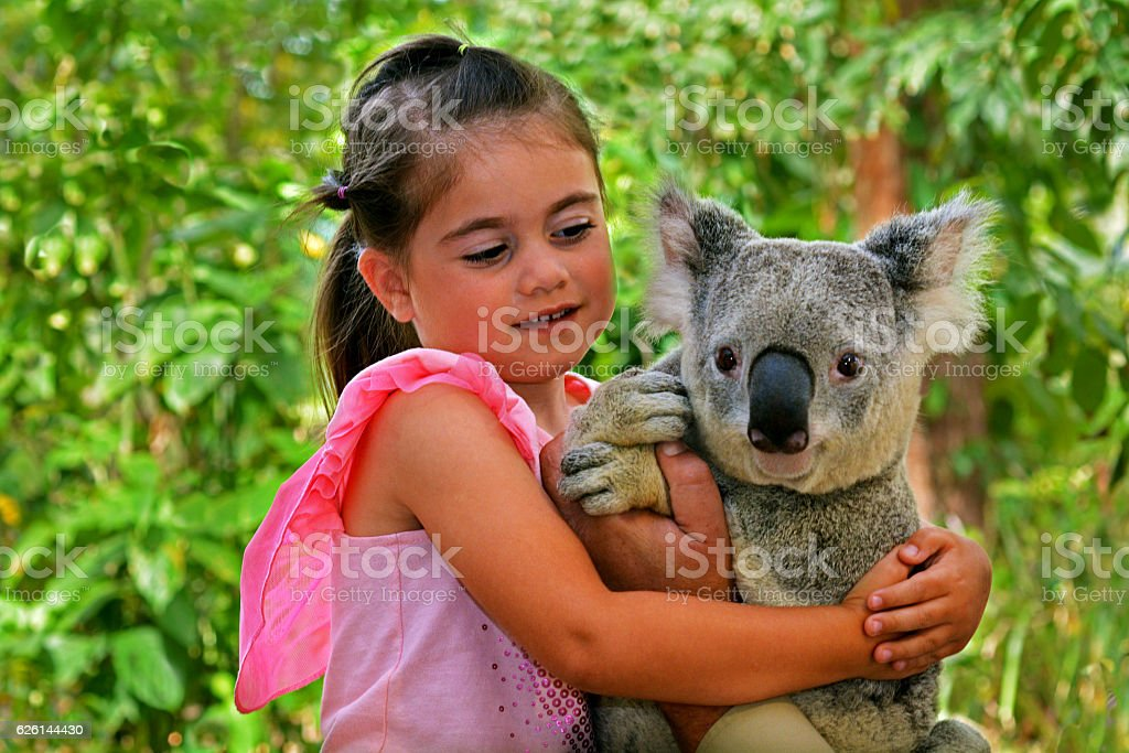 Little girl holding a Koala stock photo