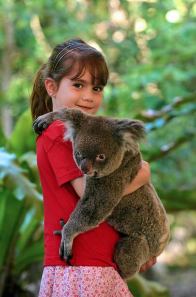 Little girl holding a Koala – Foto