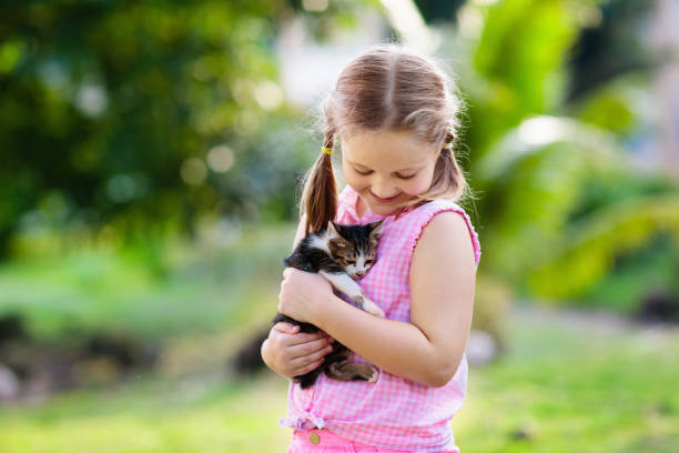 Little girl holding baby cat kids and pets picture id1068586174?b=1&k=6&m=1068586174&s=612x612&w=0&h=5tgqiwex7vc17vmokc7ej5awi 3vfs1tx8mptnod4sq=