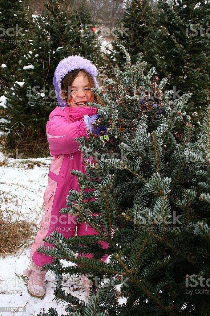 Little girl holding Christmas tree stock photo
