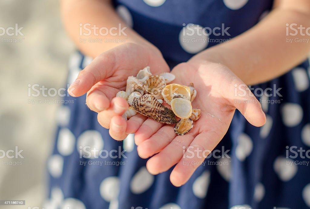 Kind Hände holding sea shells. – Foto