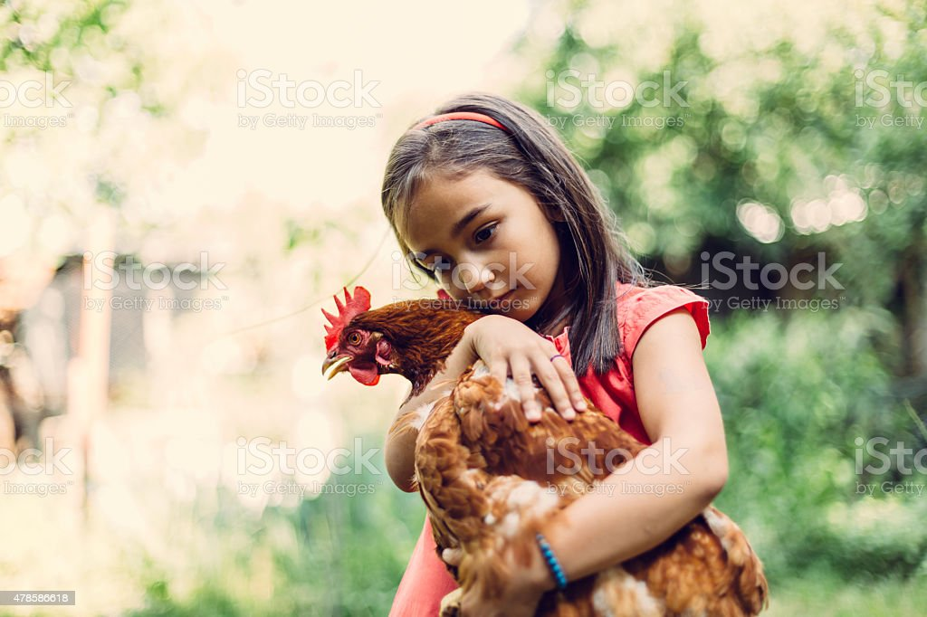 Little girl hugging a hen stock photo