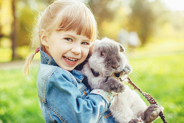 Little girl hugs a rabbit stock photo