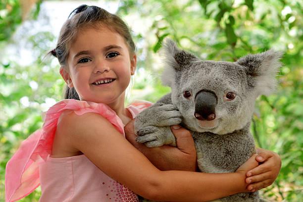 Little girl hugs Koala – Foto