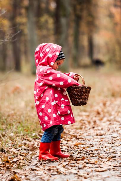 liten flicka i en ärta jacka promenader i skogen och letar svamp. - höst plocka svamp bildbanksfoton och bilder
