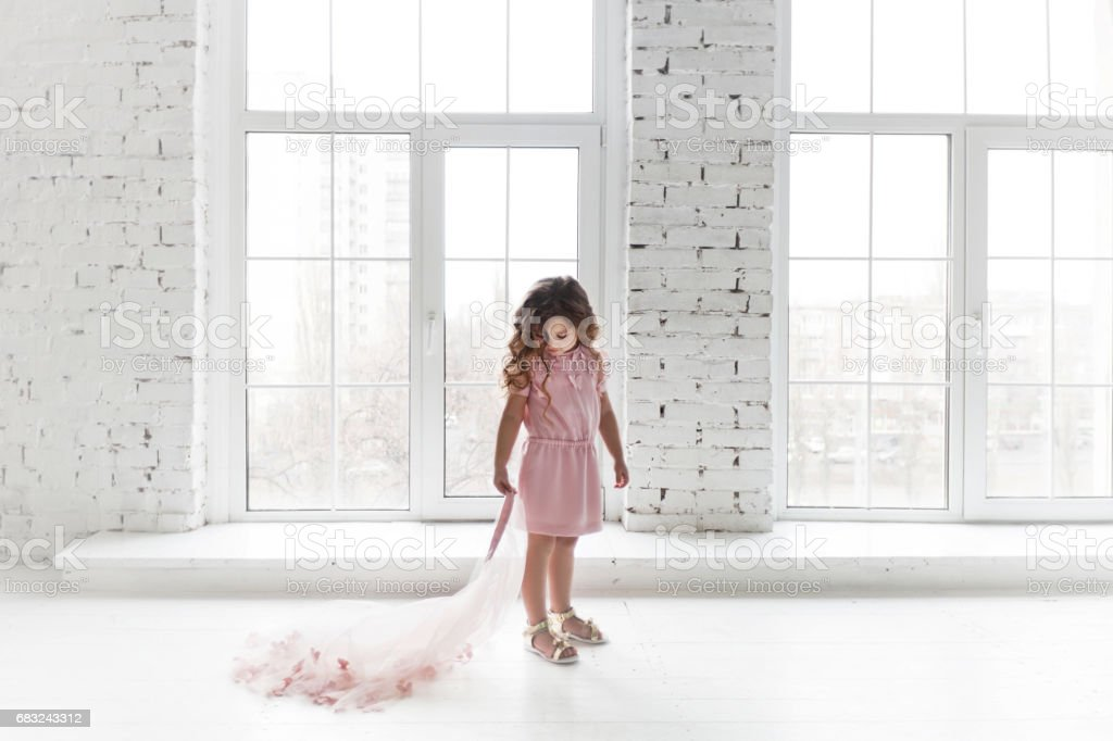 Little girl in an elegant pink dress. royalty-free 스톡 사진