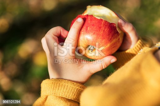 865889676 istock photo Little girl in an orchard holding a red apple 956101294