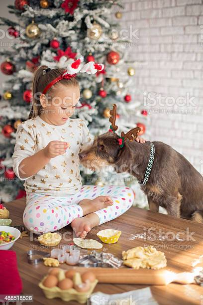 Little girl in kitchen for christmas with her dog picture id488518526?b=1&k=6&m=488518526&s=612x612&h= e3zwpgfihhgujgvejan8bf9csmhcwjejnnnbwcku q=