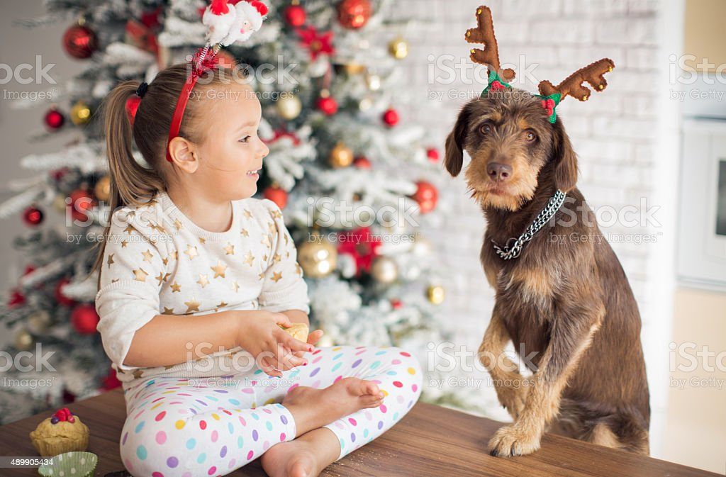 Little girl in kitchen for christmas with her dog. stock photo