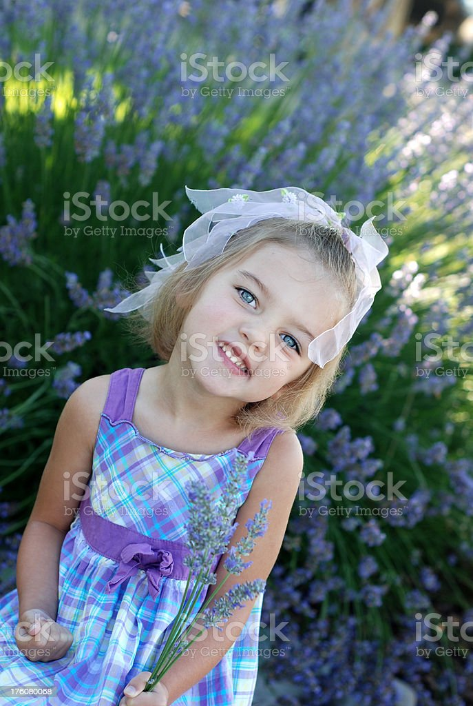 Little Girl in Lavender royalty-free stock photo