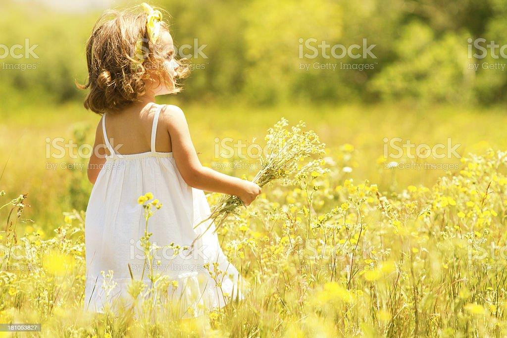 Little girl in meadow stock photo