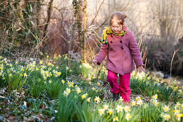 Little girl in nature, picking flowers stock photo