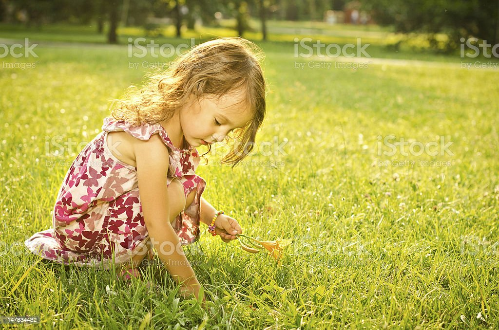 Little girl in park, picking flowers royalty-free stock photo