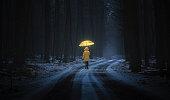 istock Little girl in the dark forest 533382297