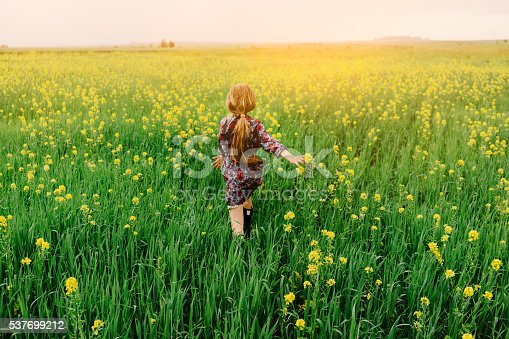 istock Little girl in the field 537699212