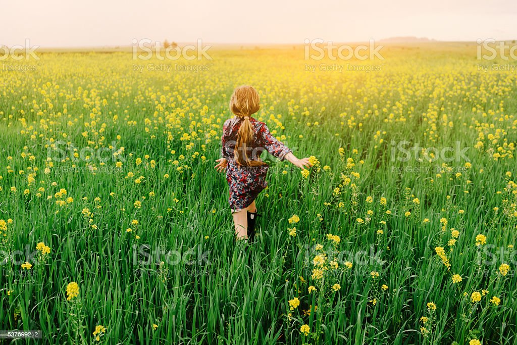 Little girl in the field stock photo
