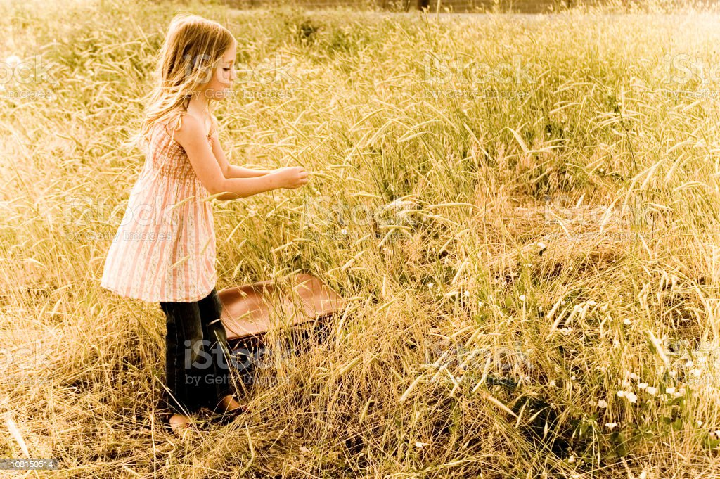 Little Girl in Wheat Field royalty-free stock photo