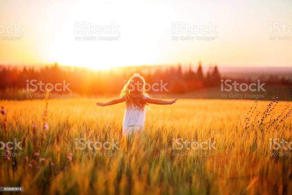 Little girl in white dress in field at sunset foto de stock royalty-free