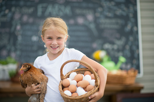 A little girl is holding her pet chicken and a basket