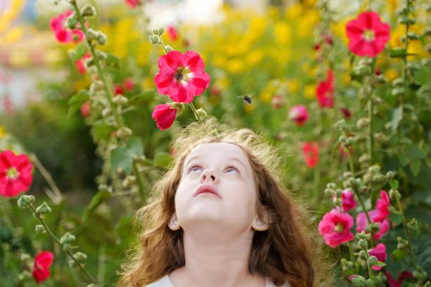 Kleines Mädchen sucht bei der Biene. – Foto