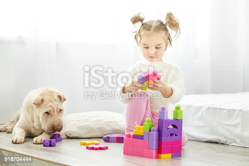 istock A little girl is playing plastic toys blocks. The dog lies. The concept of lifestyle, childhood, upbringing, family. 918704444