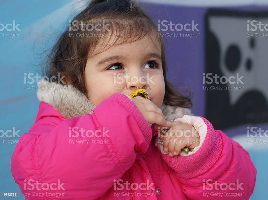 'little girl is smelling flower' royalty-free stock photo