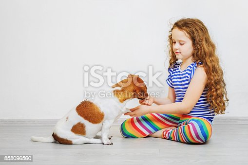 885056264istockphoto Little girl is training the dog jack russel terrier. 858096560