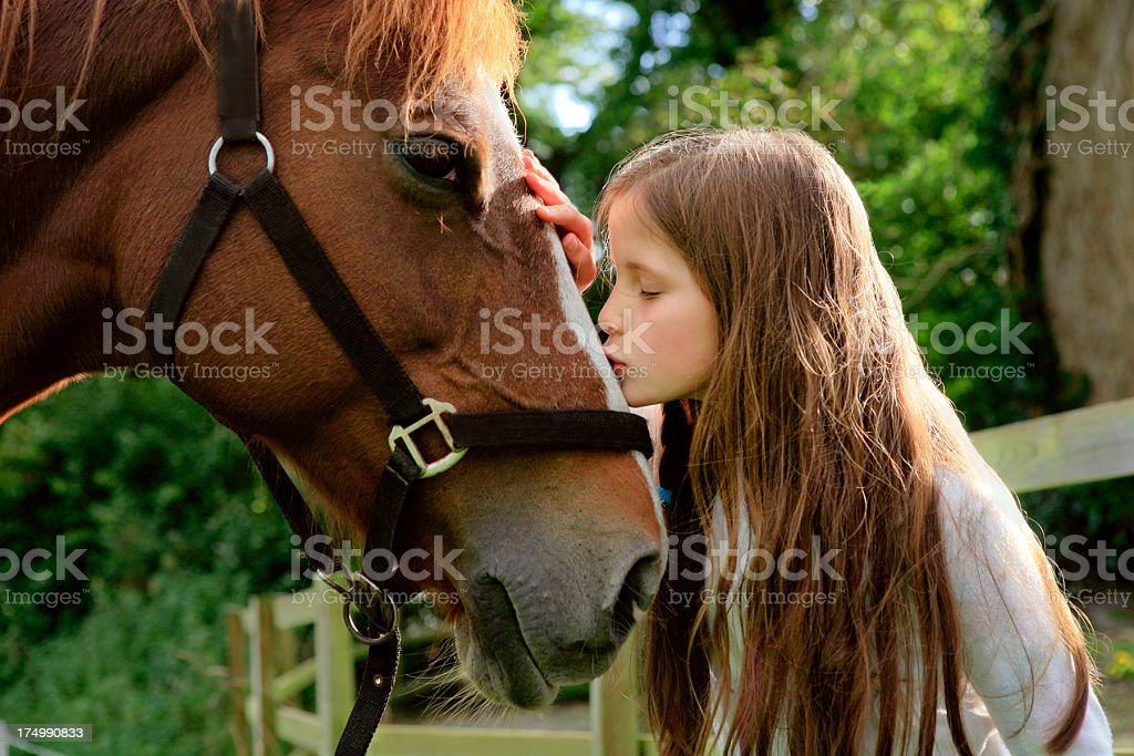 Little girl kissing a horse royalty-free stock photo