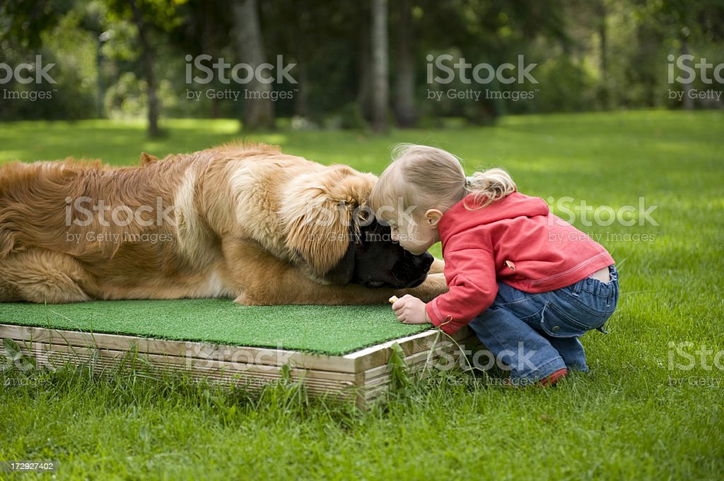Little girl kissing her pet dog stock photo