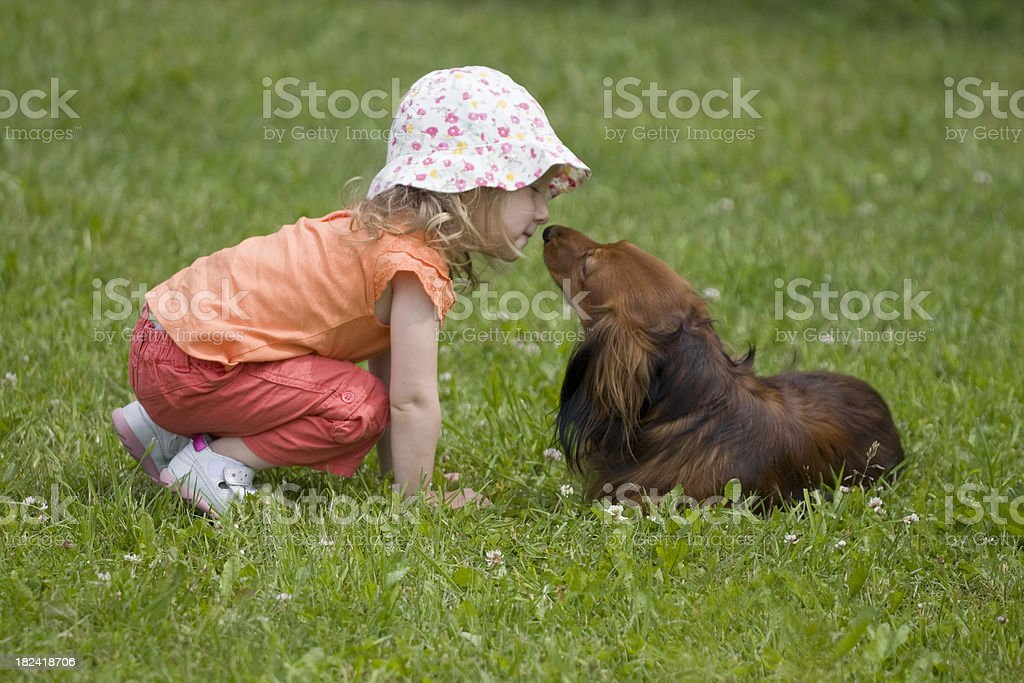 Little girl kissing her pet dog royalty-free stock photo