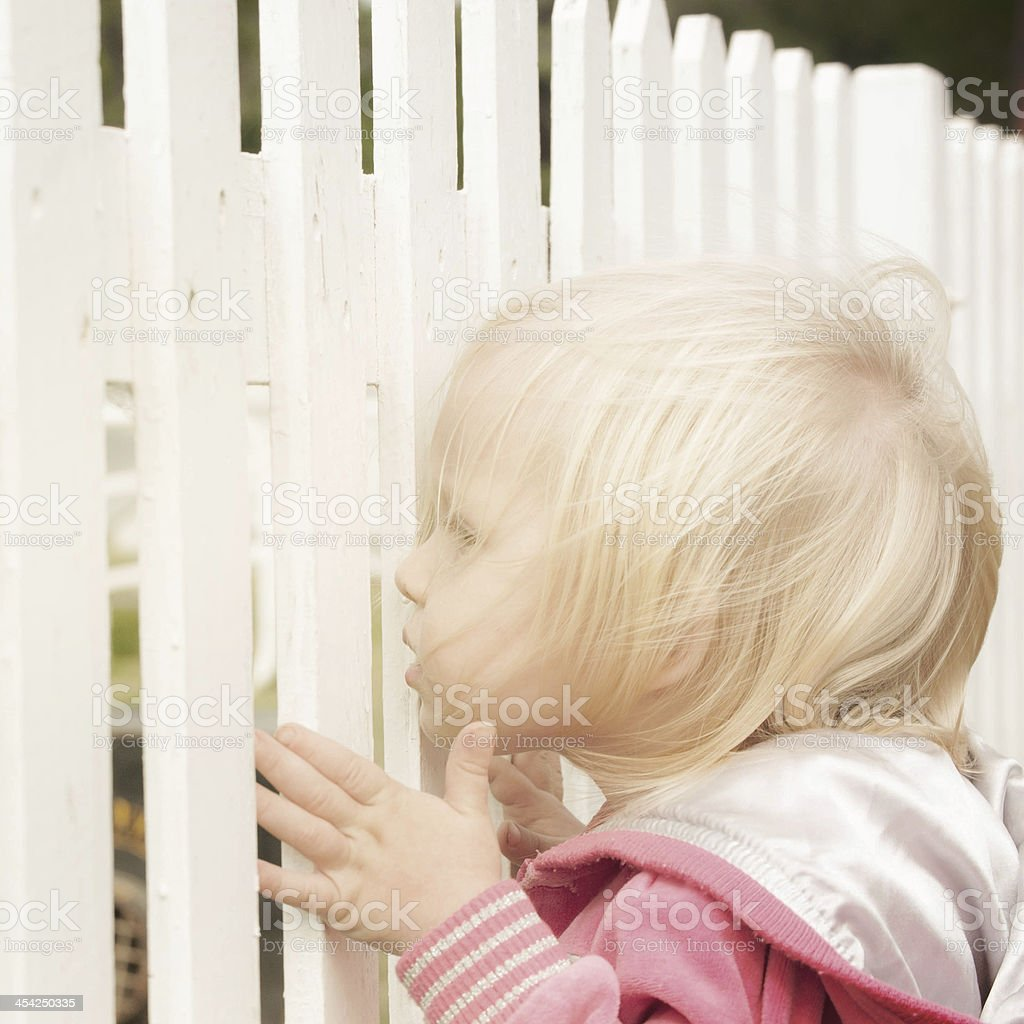 Little girl looking from fence royalty-free stock photo